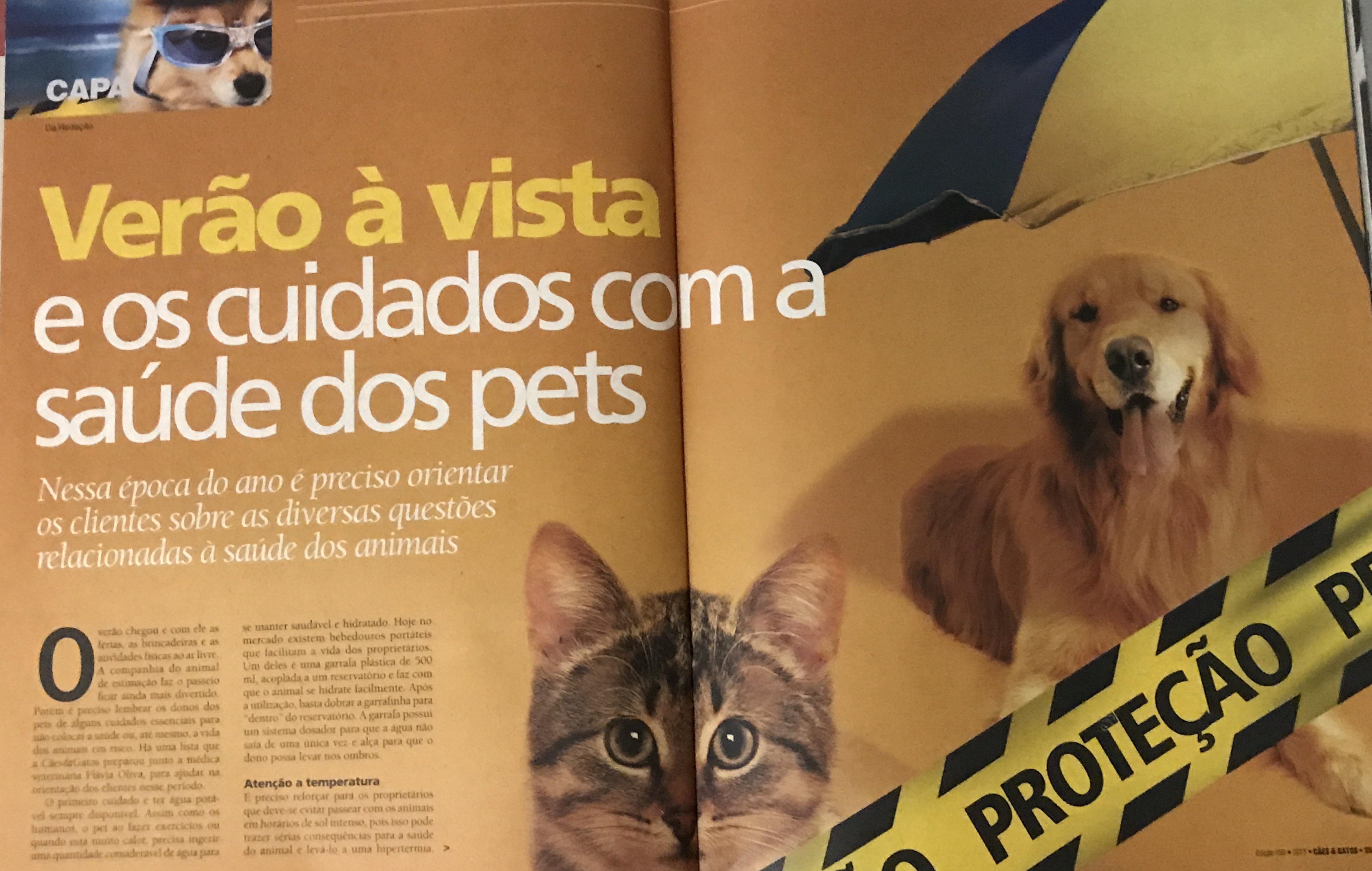 REPORTAGEM DE CAPA