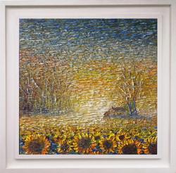 Sun Field II