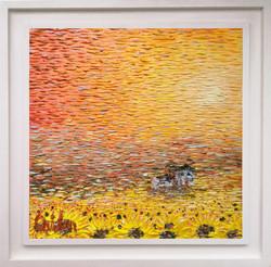 Sun Field III