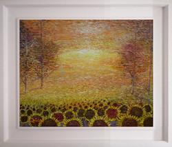 Sunflowers A Field