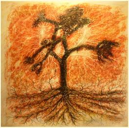 "Chris Quinlan Art - Entry for the 2FM ""U2 JOSHUA TREE"" New Roots"" album design 2017"