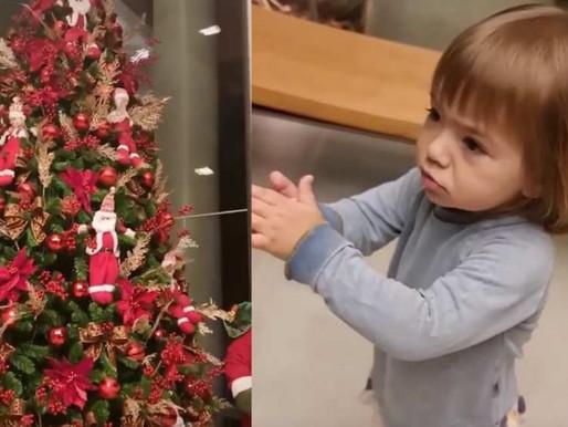 Brasileiros montam árvore de Natal mais cedo pra aliviar 2020
