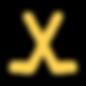 ColoradoHockeyTraining_Icon_CrossedStick