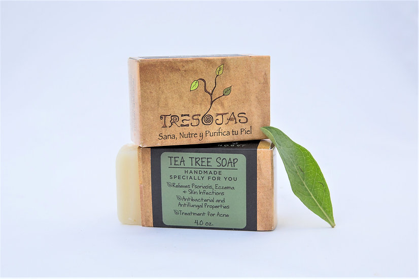 Arbol de Té (Tea Tree)
