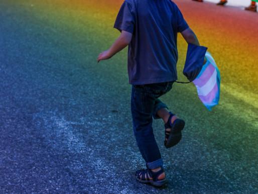 Според ООН Финландия нарушава правата на дете с две майки след като отказва иска им за убежище