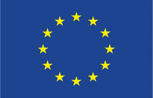 """С финансовата подкрепа на Програма """"Права, равенство и гражданство"""" (2014-2020) на Европейския съюз"""