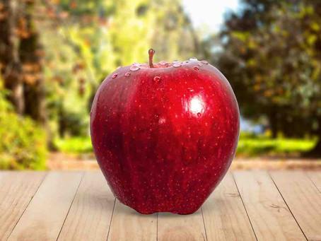 奇跡のリンゴ◆名医と名生産者と料理人と。健康長寿の世界を創る/20200129