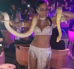 Charmeuse de serpent danse en spectacle oriental