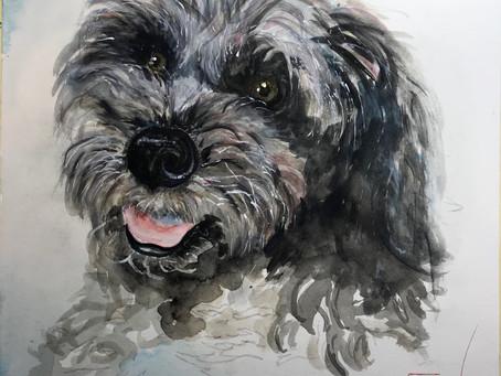 TAZ Watercolor