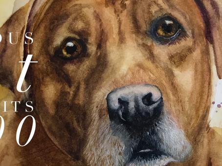 Watercolors of Pets