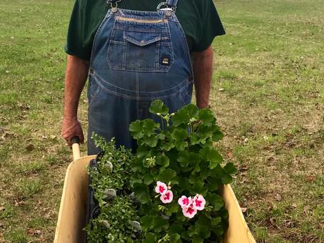 Grandpa's planting hanging baskets