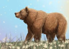 grizzlypeace.jpg