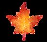 watercolor-logo.png