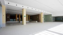 bryaxis_hospital_navarra_9