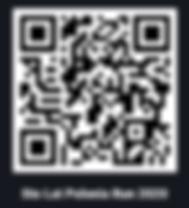 flashcode stolatpoloniarun.png