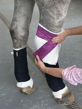 RL-bandaging.jpg