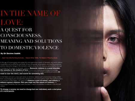 In the Name of Love: A Quest for Consciousness, Meaning and Solutions to Domestic Violence