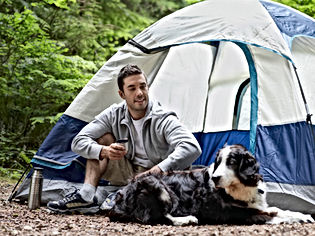 Camping-With-Dog-460.jpg