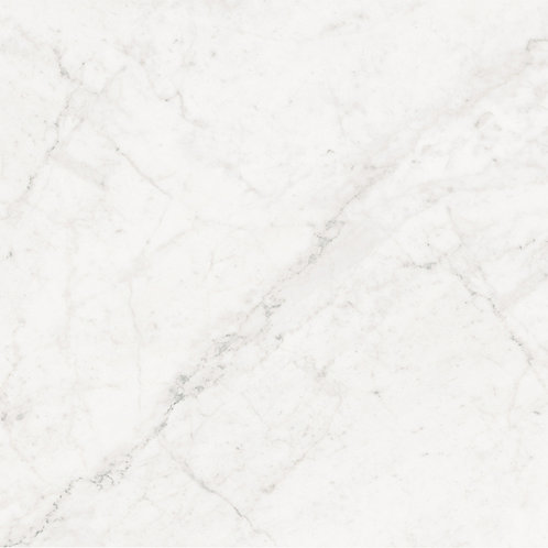 Segway Carrara Polished Porcelain 600x600mm