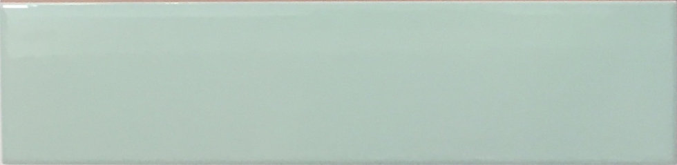 Coral Reef Subway Collection Pastel Green Gloss 65x265x8mm