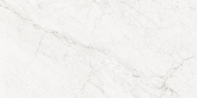 Segway Carrara Polished Porcelain 300x600mm