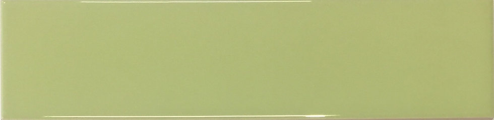 Coral Reef Subway Collection Fruit Green Gloss 65x265x8mm