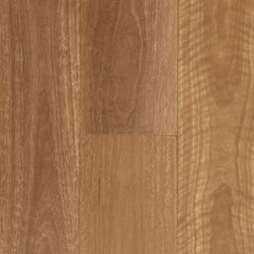 Albert QLD Spotted Gum Hybrid Timber 178x1800x6.5mm