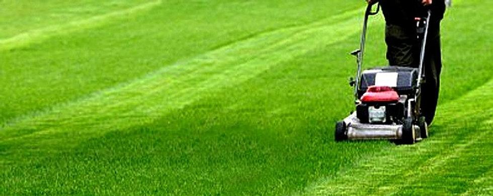 Les jardins d 39 aur lien paysagiste essonne for Paysagiste essonne