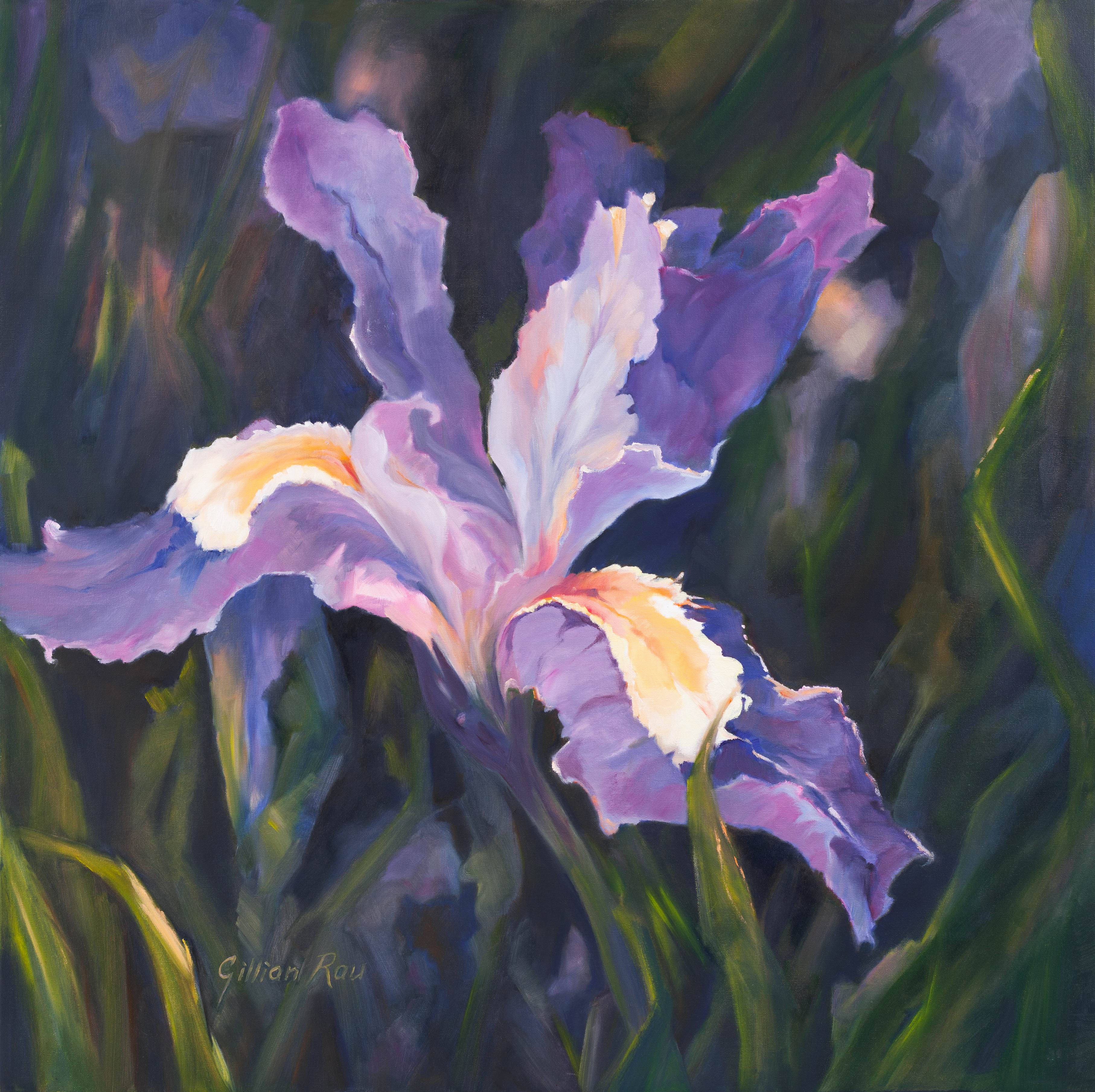Blue Iris (Beacon of Light)