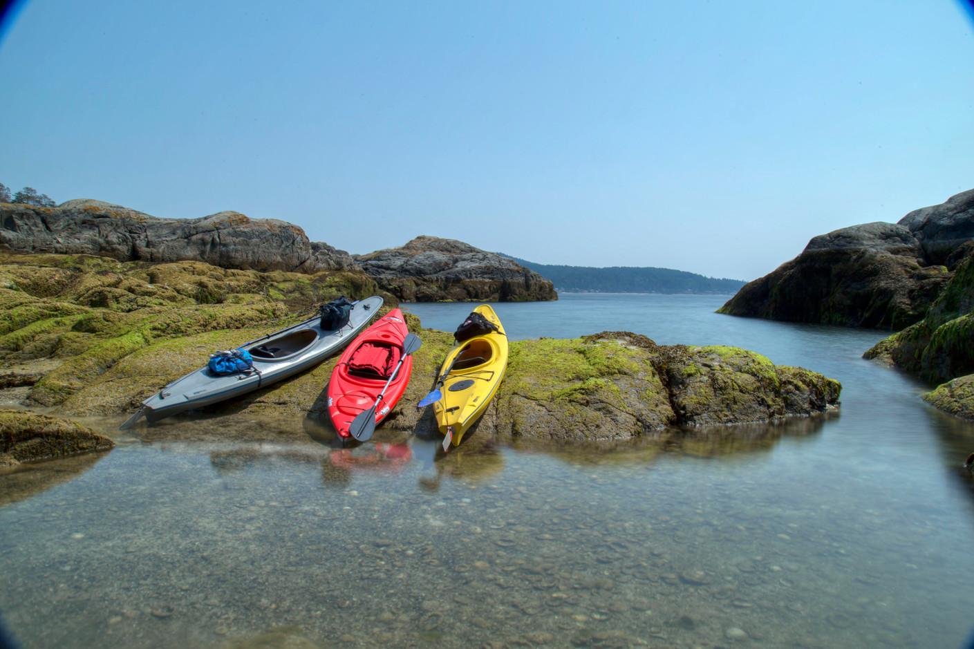 seal island.jpg