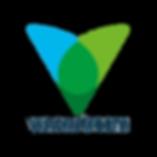 Visionstream Logo-big-1.png