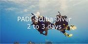 PADI Scuba Diver Text.JPG