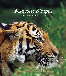 Majestic Stripes.jpg