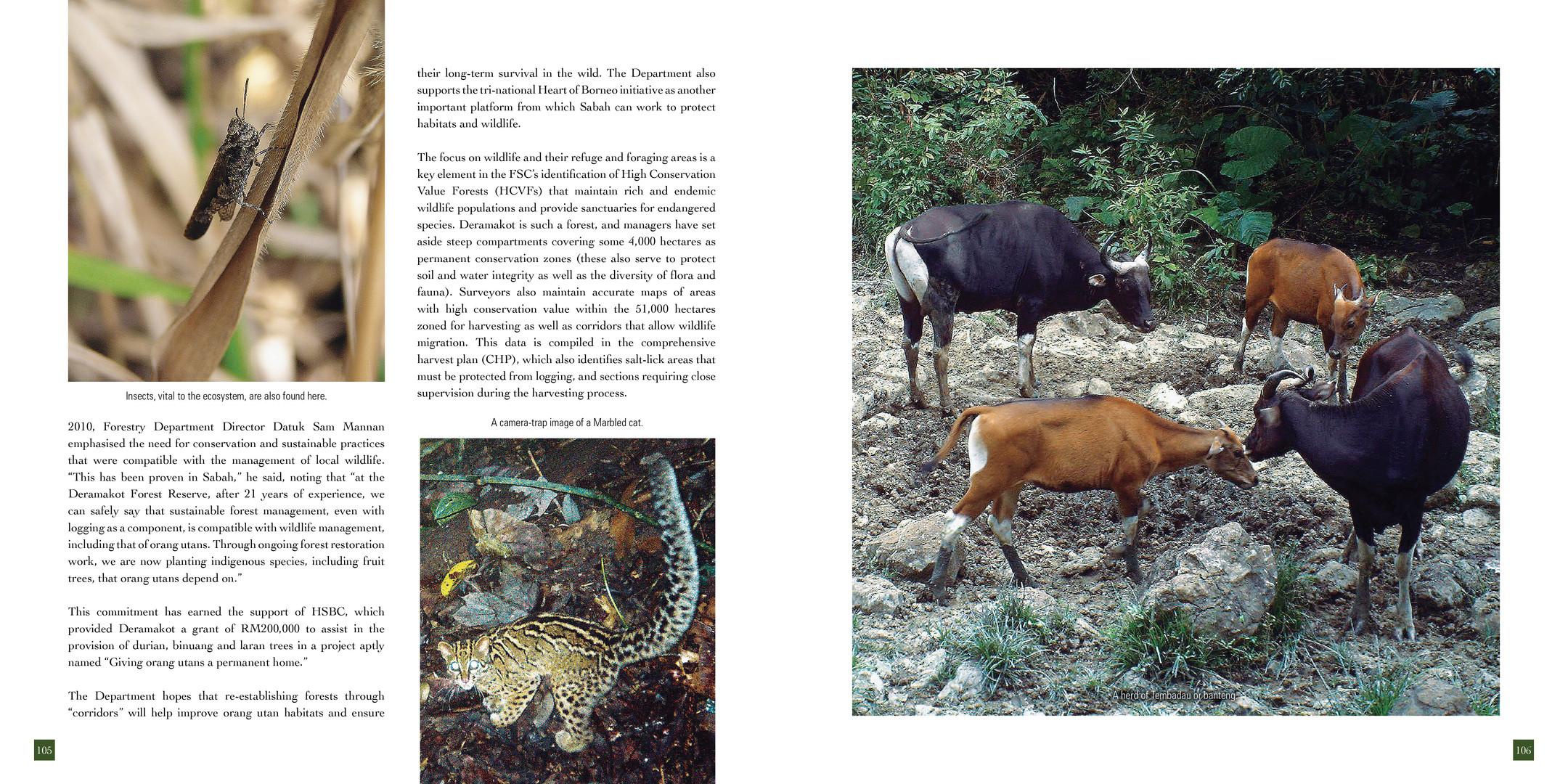 section4_pg95-120 OK.jpg