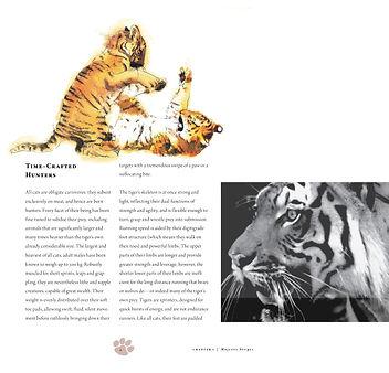tiger_book_dec0113.jpg
