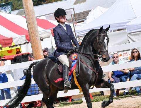 Deerfield Fair 2018 Jr Ex Equitation
