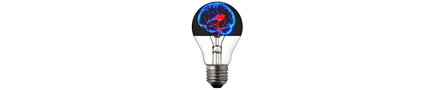Lightbulb with Brain Banner.jpg
