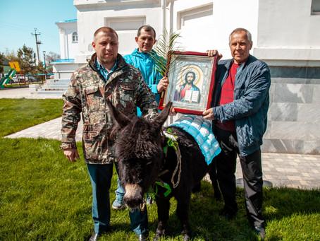 """В Ахтубинске возрождают традицию """"шествия на осляти"""""""