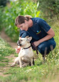 Lets Walk Dogs - Taunton dog walker 64