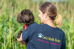 Professional dog walker from Lets Walk Dogs holding a Cockerpoo in Taunton, Somerset