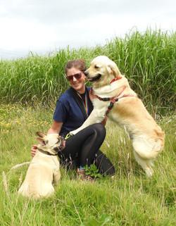 Lets Walk Dogs - Taunton dog walker 135.