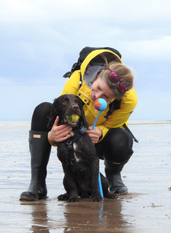 Dog walker from Taunton on the beach with the Sprocker spaniel