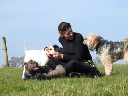 Lets Walk Dogs - Taunton dog walker 116.