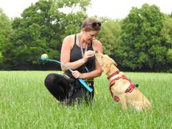 Lets Walk Dogs - Taunton dog walker 78