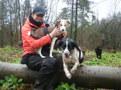 Lets Walk Dogs - Taunton dog walker 88