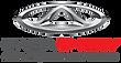 caoa-chery-logo.png