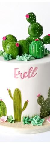 Cake design gâteau cactus
