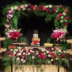 amira table