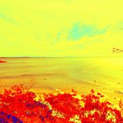 Retro Beach 3.jpg