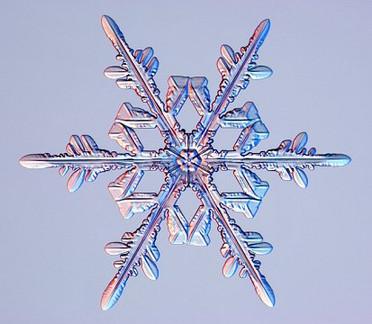 Flocon de neige pour sets de table (1).j